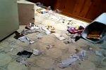 Hund verwüstet die Wohnung