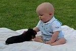 Welpe gegen Baby