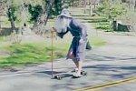Gandalf auf einem Longboard