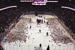 Teddybären-Werfen im Stadion