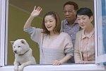 Japanische Werbung mit einem Propeller-Hund