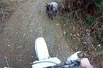 Rammbock gegen Motorradfahrer