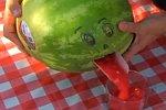 Smoothie aus Wassermelone