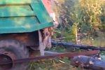 Bäume verladen in Russland