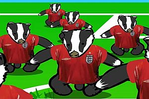 Football Badgers