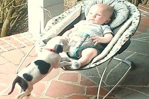 Ein Baby kuschelt mit einem Welpen