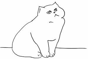 Eine Katze und ein Glas