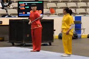 Kampfsport Wushu
