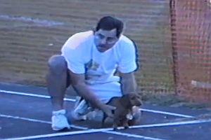 Hund gewinnt Rennen mit unfairen Mitteln