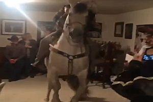 Hausparty mit einem Pferd