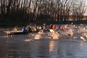 Ruderer fahren durch Fischschwarm