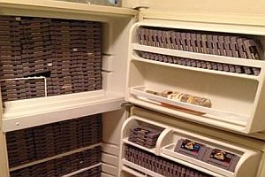 Kühlschrank voll Jurassic Park Games