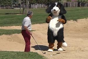 Remi Gaillard als Hund