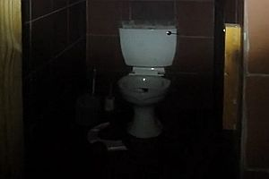 Ein kräftiger Schluck aus der Toilette