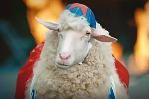 Das heißeste Schaf im Netz