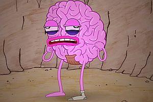 Was macht eigentlich dein Gehirn?