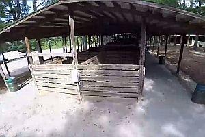 Drohne fliegt durch Stall