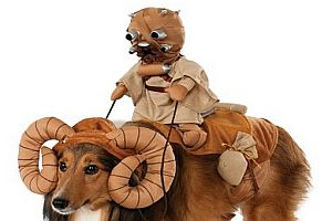 Star Wars Bantha Hundekostüm