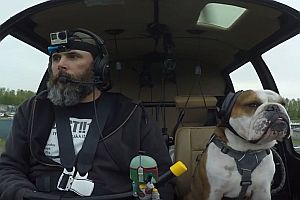 Hund als Co-Pilot im Hubschrauber