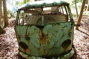Alter VW-Bus aus dem Wald