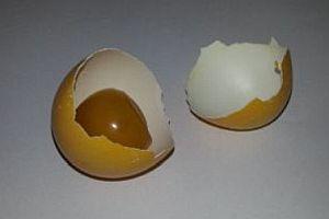 Ein altes Ei für viel Geld