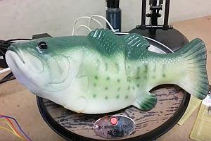 Sprechender Alexa-Fisch