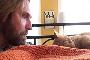 Rache an einer Katze
