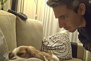 Hund mit Schnarchen aufwecken
