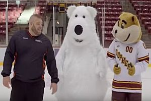 Eisbär kann nicht auf Eis laufen