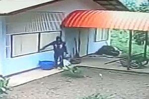 Einbrecher steigt durchs Fenster ein