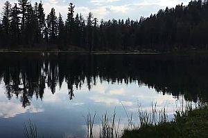 Einen See erschrecken