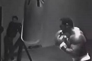 Mike Tyson bearbeitet einen Sandsack