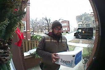 Paketbote wird von Eichhörnchen begrüßt