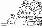 Simon's Cat in Santa Claws