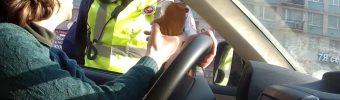 Hamster in einer Polizeikontrolle
